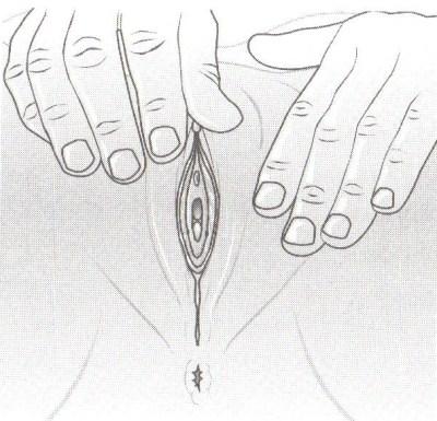 ženský orgazmus Ako dosiahnuť 15 minútový ženský orgazmus? zensky orgazmus4400 x 385