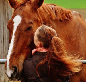 žena a kôň výnimočná žena 15 jasných znamení, že randíš s výnimočnou ženou horse 1333897 640 e1467052758619 300x284