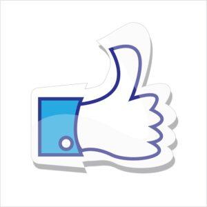 like na facebooku  ako vystupovať na internete Ako vystupovať na internete, aby si nevyzeral ako blbec (toto nerob) yes 980034 640 300x300